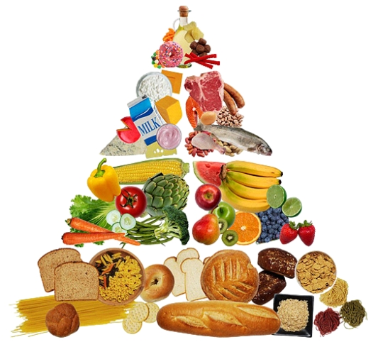 Picture of a food pyramid