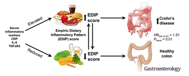 An illustration of how food might cause Crohn's disease